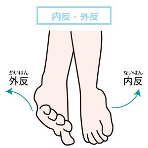 足の内反・外反の画像